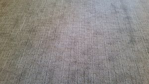 Living Room Carpet | Brandt Carpet and Tile